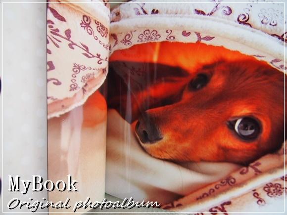 MyBook(マイブック)で写真集のような高品質フォトブックを作ってみた